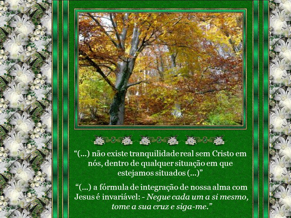 (...) não existe tranquilidade real sem Cristo em nós, dentro de qualquer situação em que estejamos situados (...)