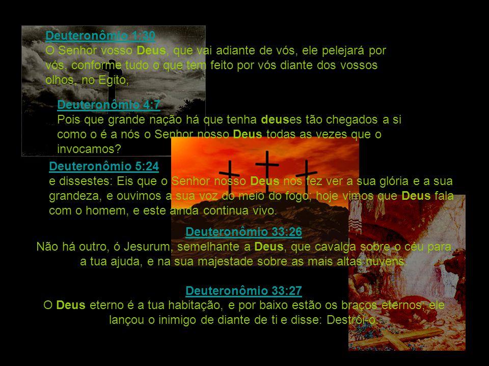 Deuteronômio 1:30 O Senhor vosso Deus, que vai adiante de vós, ele pelejará por vós, conforme tudo o que tem feito por vós diante dos vossos olhos, no Egito,