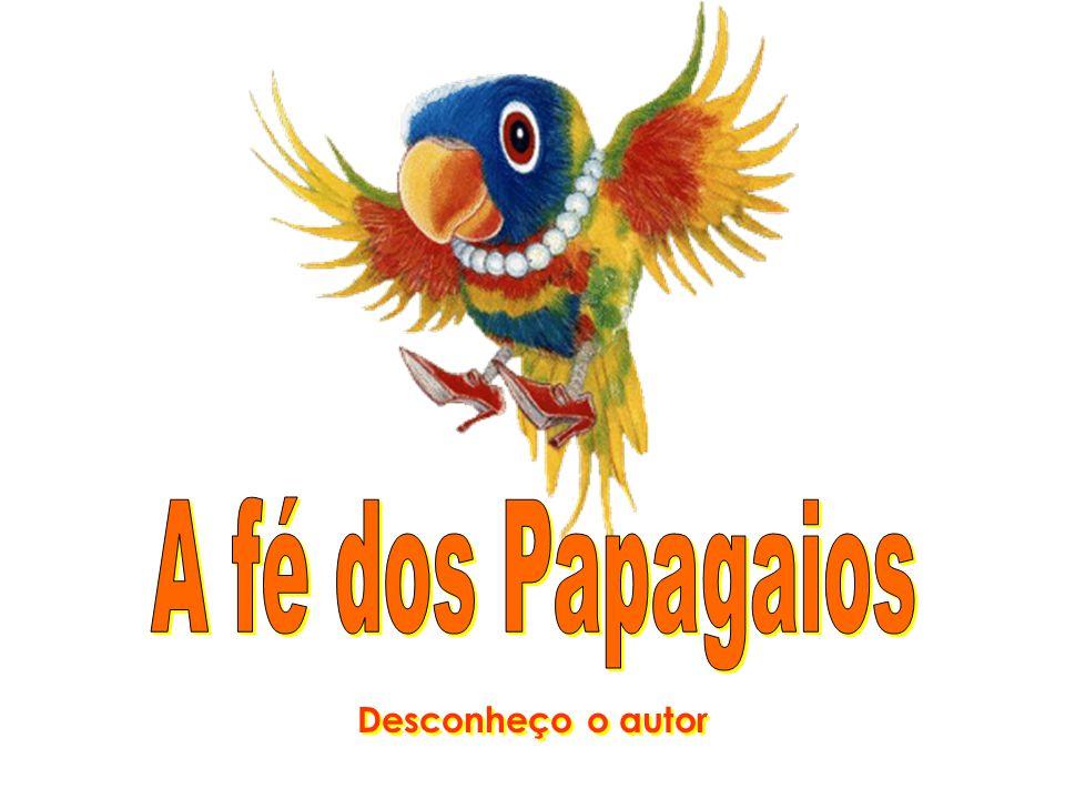 A fé dos Papagaios Desconheço o autor