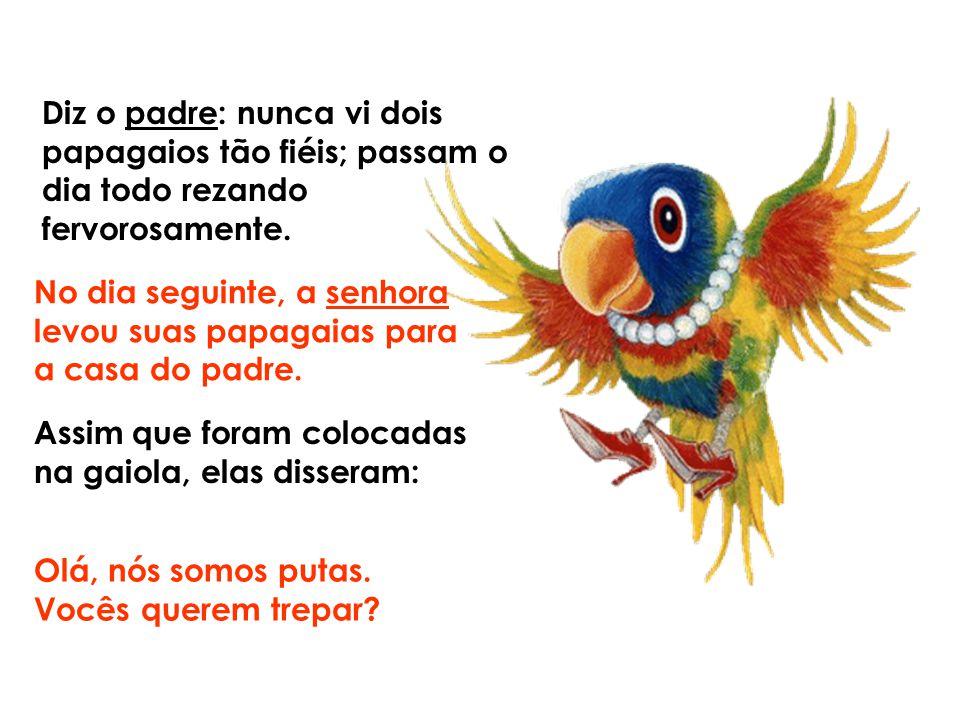 Diz o padre: nunca vi dois papagaios tão fiéis; passam o dia todo rezando fervorosamente.