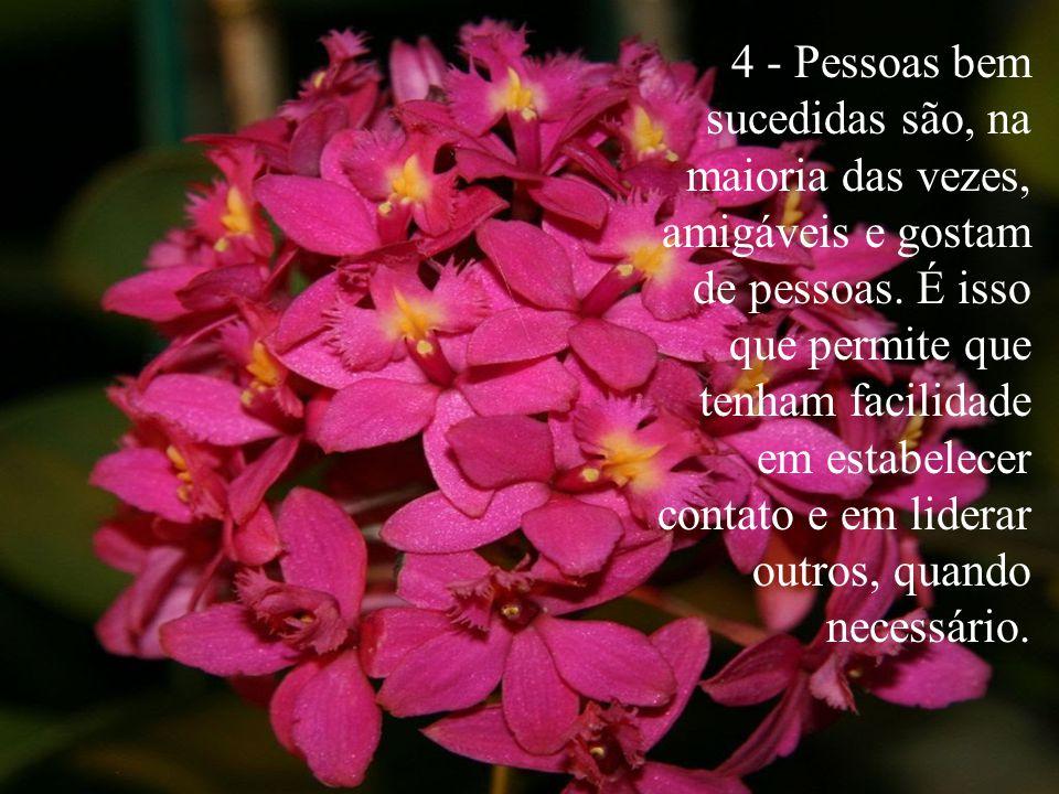 4 - Pessoas bem sucedidas são, na maioria das vezes, amigáveis e gostam de pessoas.
