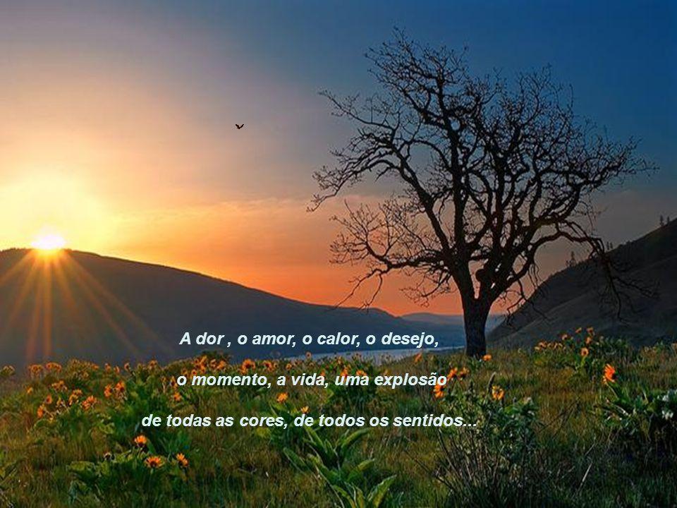 A dor , o amor, o calor, o desejo, o momento, a vida, uma explosão