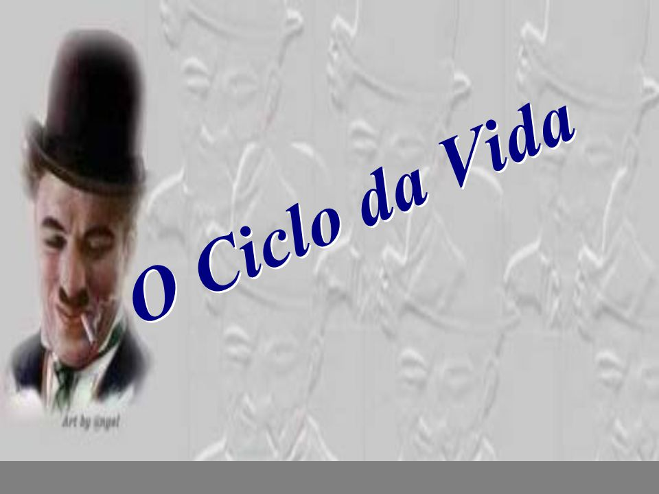O Ciclo da Vida nilsonhussar@yahoo.com.br