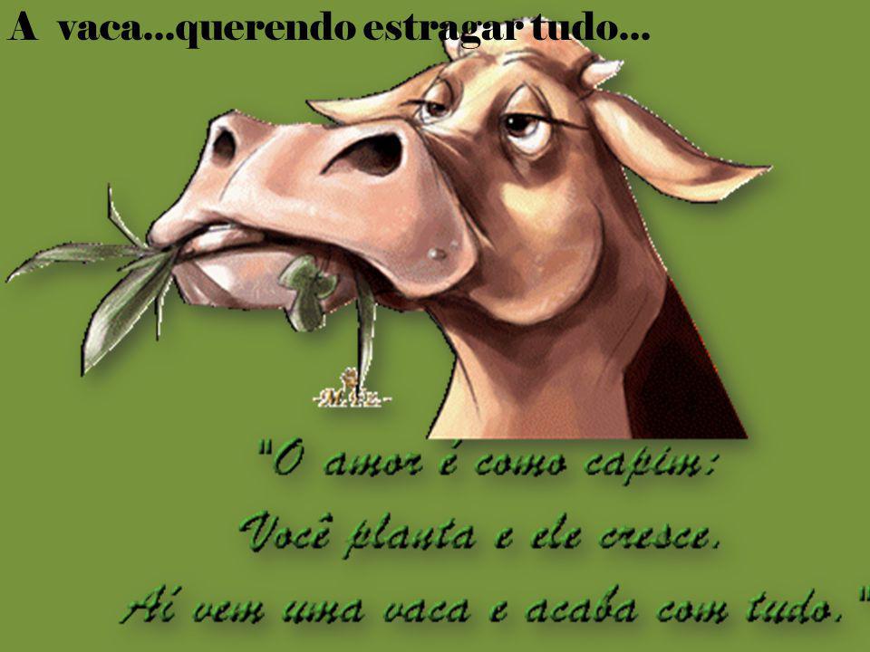 A vaca...querendo estragar tudo...