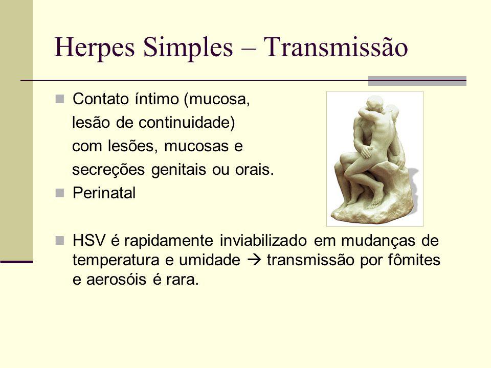 Herpes Simples – Transmissão