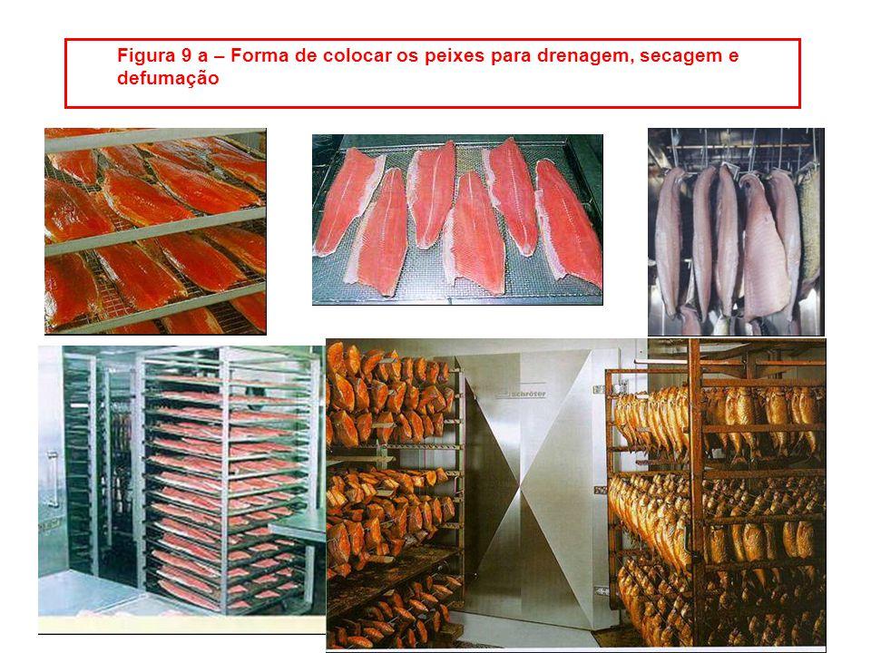 Figura 9 a – Forma de colocar os peixes para drenagem, secagem e defumação