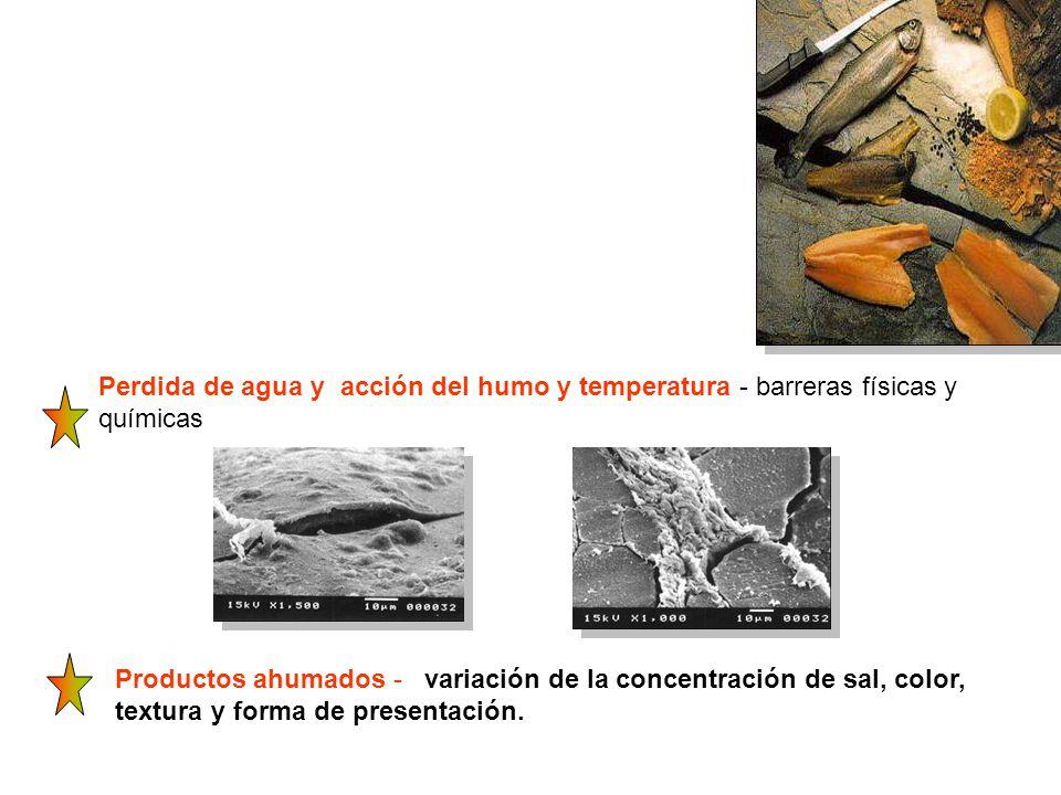 Perdida de agua y acción del humo y temperatura - barreras físicas y químicas