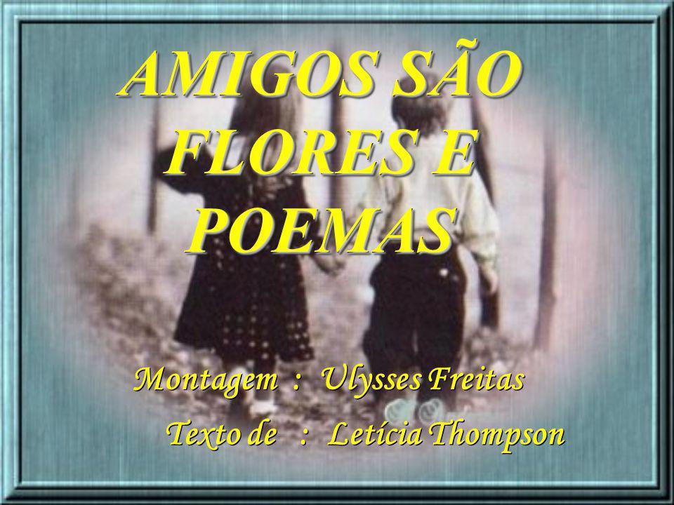 AMIGOS SÃO FLORES E POEMAS Texto de : Letícia Thompson