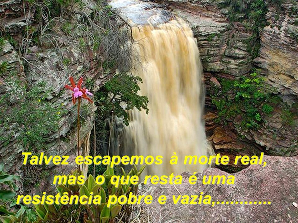 Talvez escapemos à morte real, mas o que resta é uma resistência pobre e vazia,............