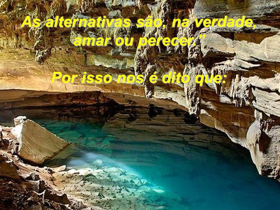 As alternativas são, na verdade, amar ou perecer.