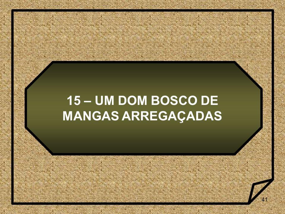 15 – UM DOM BOSCO DE MANGAS ARREGAÇADAS