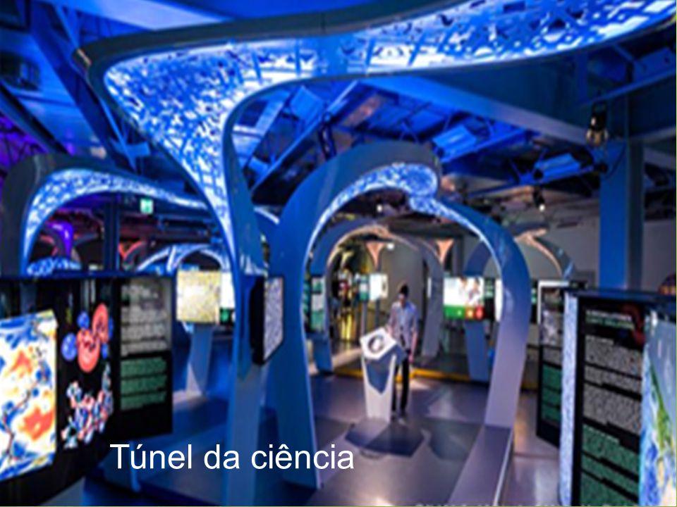 Túnel da ciência