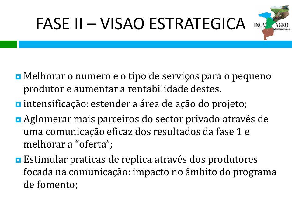 FASE II – VISAO ESTRATEGICA