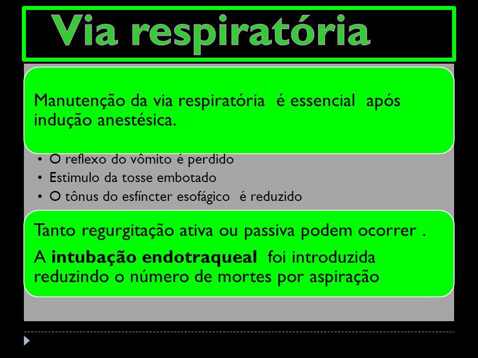 Via respiratória Manutenção da via respiratória é essencial após indução anestésica. O reflexo do vômito é perdido.