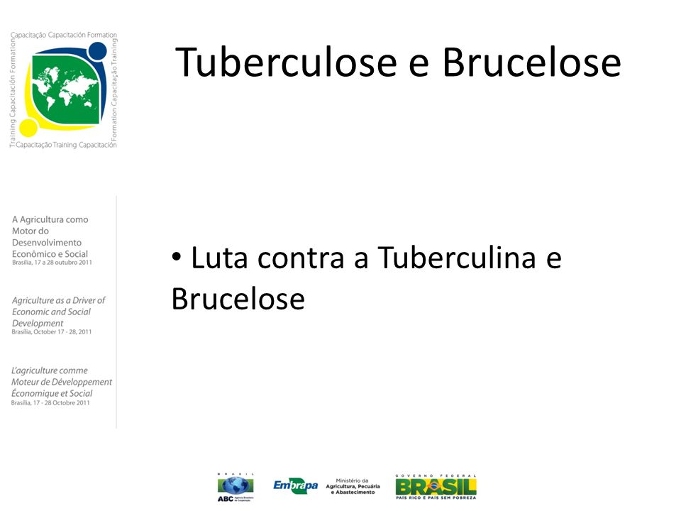 Tuberculose e Brucelose