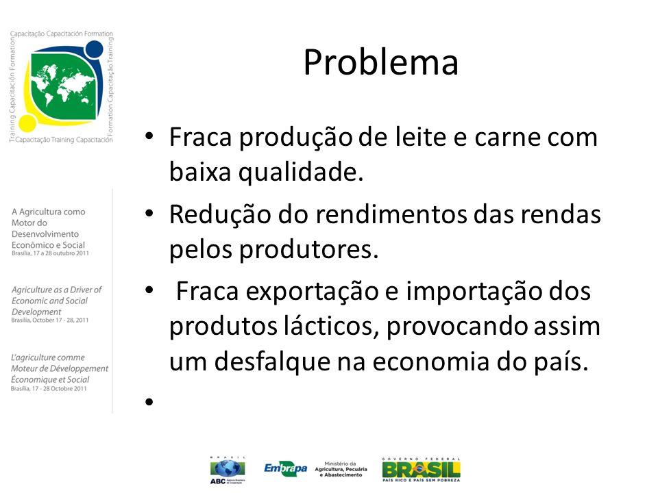 Problema Fraca produção de leite e carne com baixa qualidade.