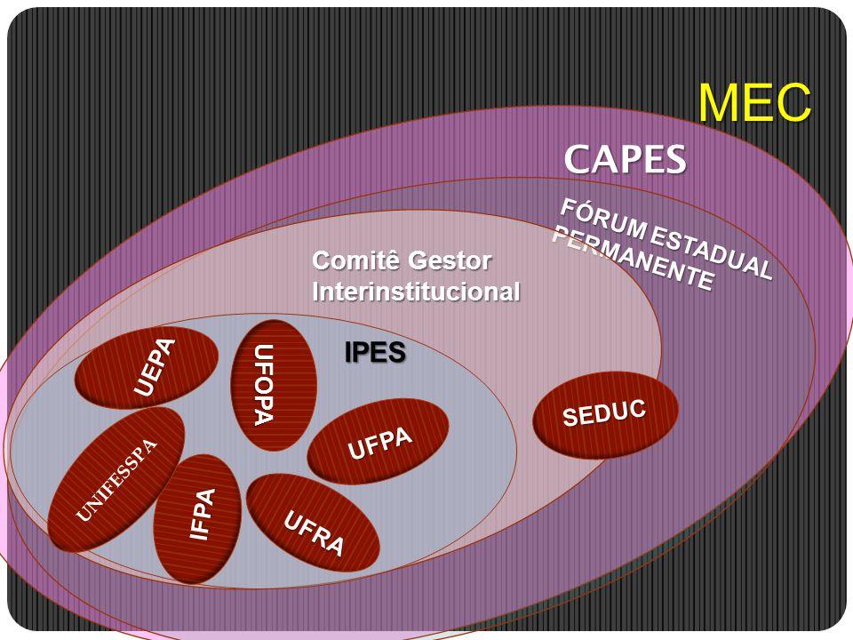 MEC CAPES IPES Comitê Gestor Interinstitucional