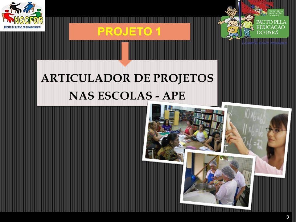 ARTICULADOR DE PROJETOS