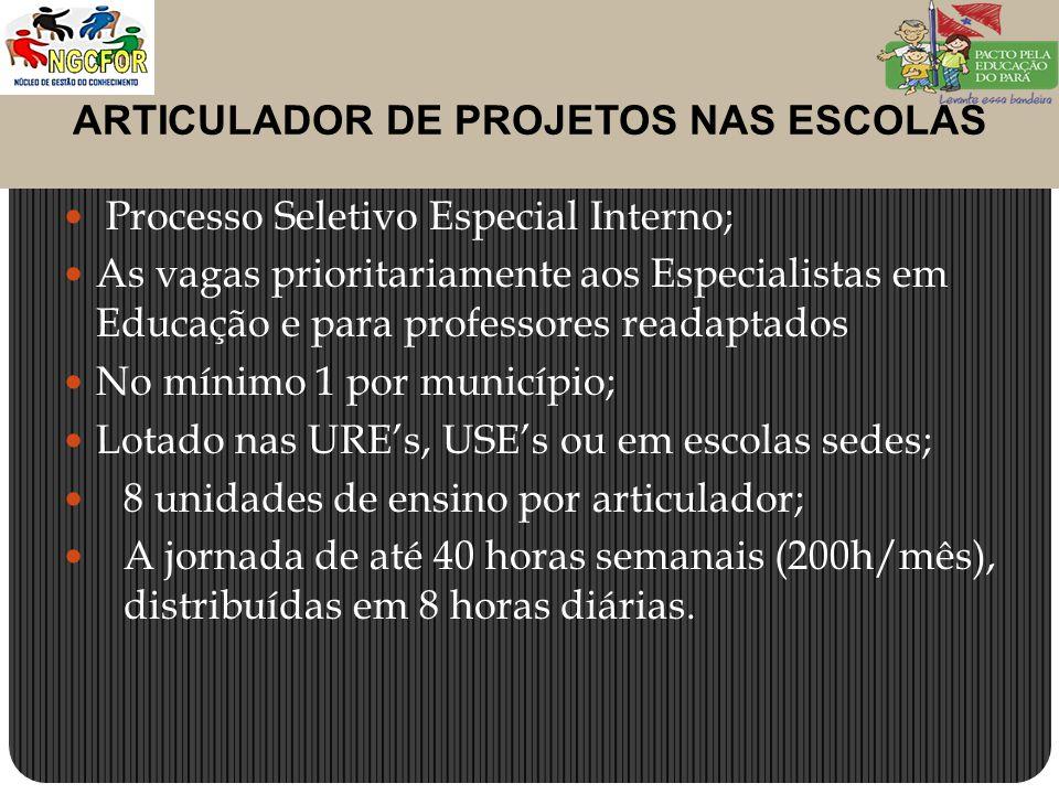 ARTICULADOR DE PROJETOS NAS ESCOLAS