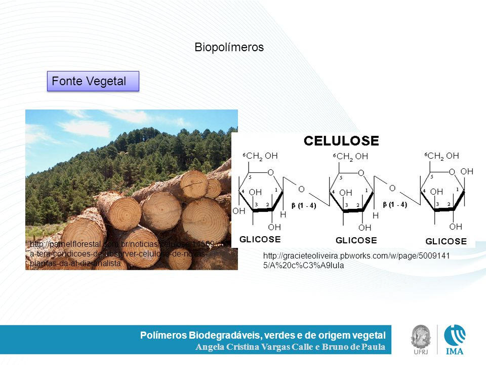 Biopolímeros Fonte Vegetal