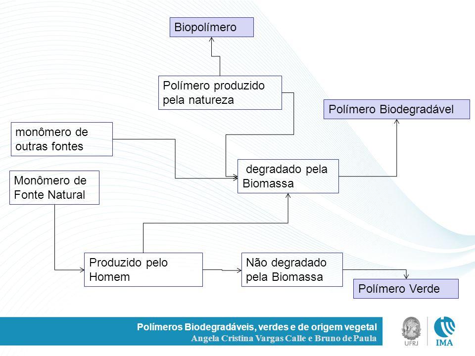 Polímero produzido pela natureza