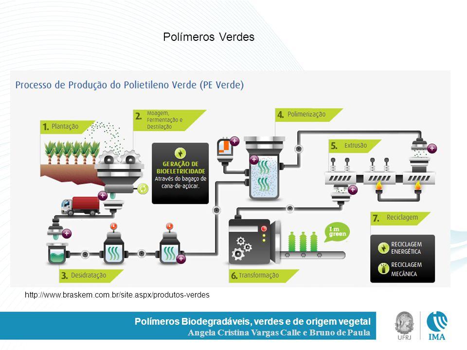 / Polímeros Verdes. http://www.braskem.com.br/site.aspx/produtos-verdes. Polímeros Biodegradáveis, verdes e de origem vegetal.