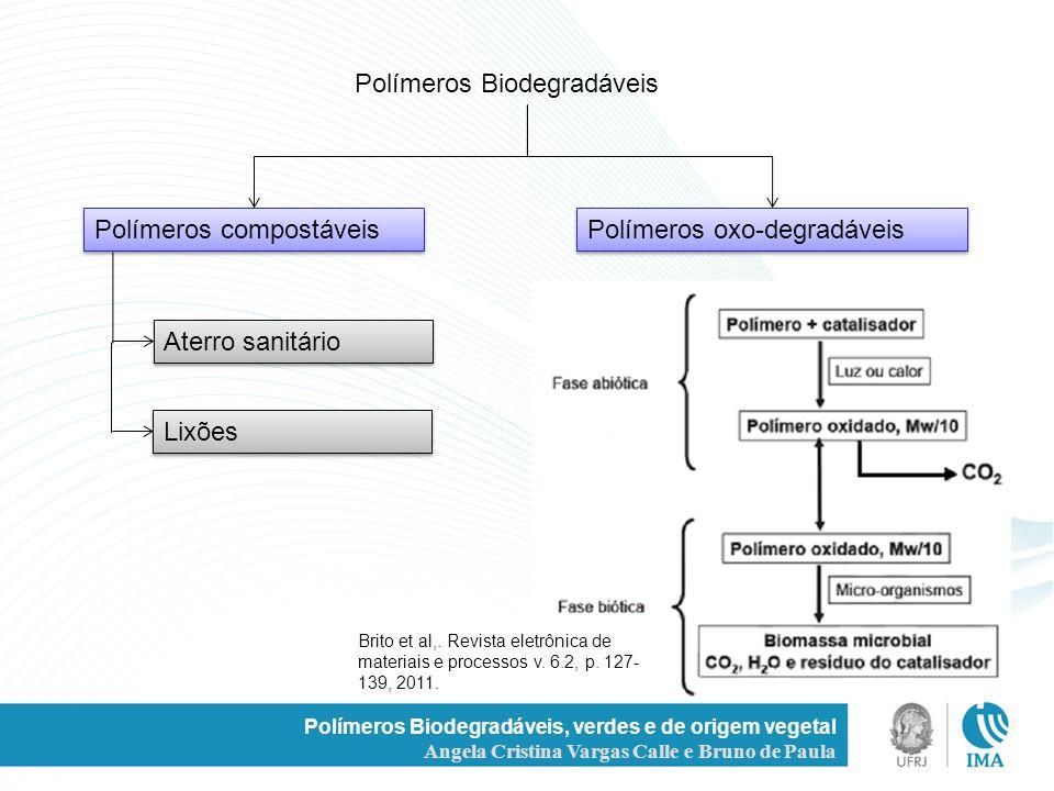 Polímeros Biodegradáveis