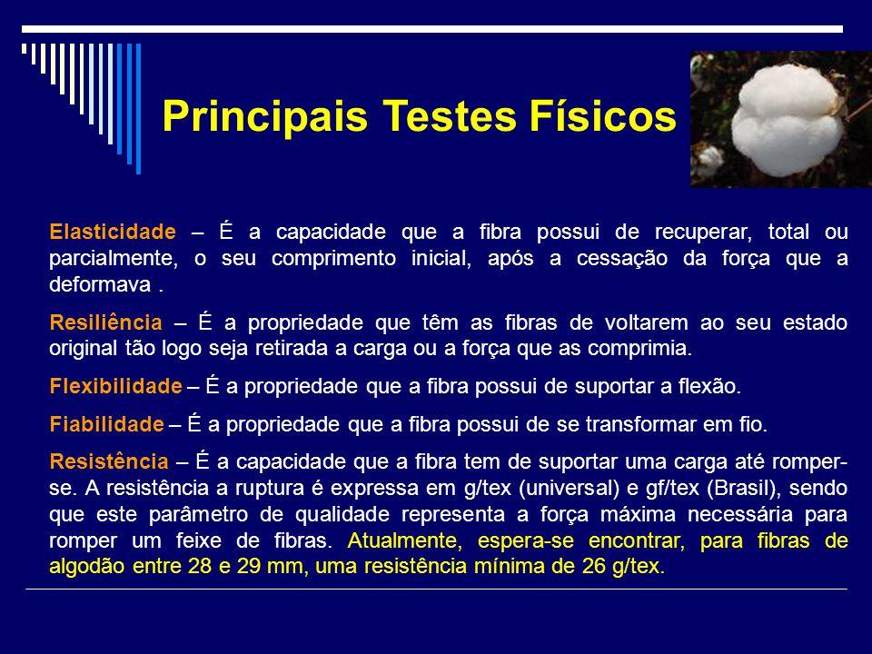 Principais Testes Físicos