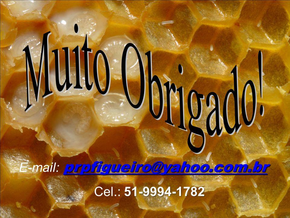 Muito Obrigado! E-mail: prpfigueiro@yahoo.com.br Cel.: 51-9994-1782