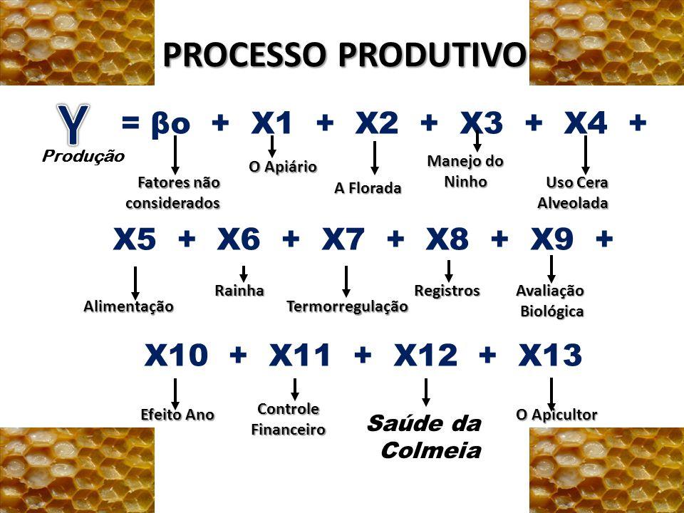 Y PROCESSO PRODUTIVO = βo + X1 + X2 + X3 + X4 +