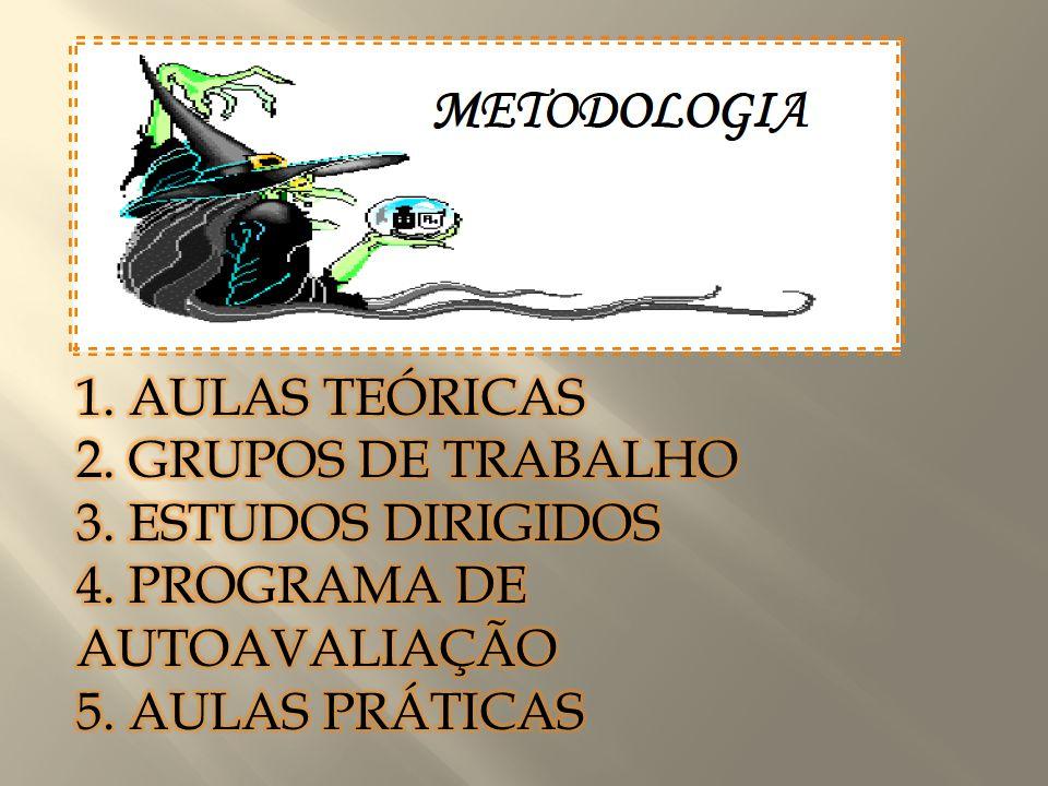 APRESENTAÇÃO 1. AULAS TEÓRICAS 2. GRUPOS DE TRABALHO