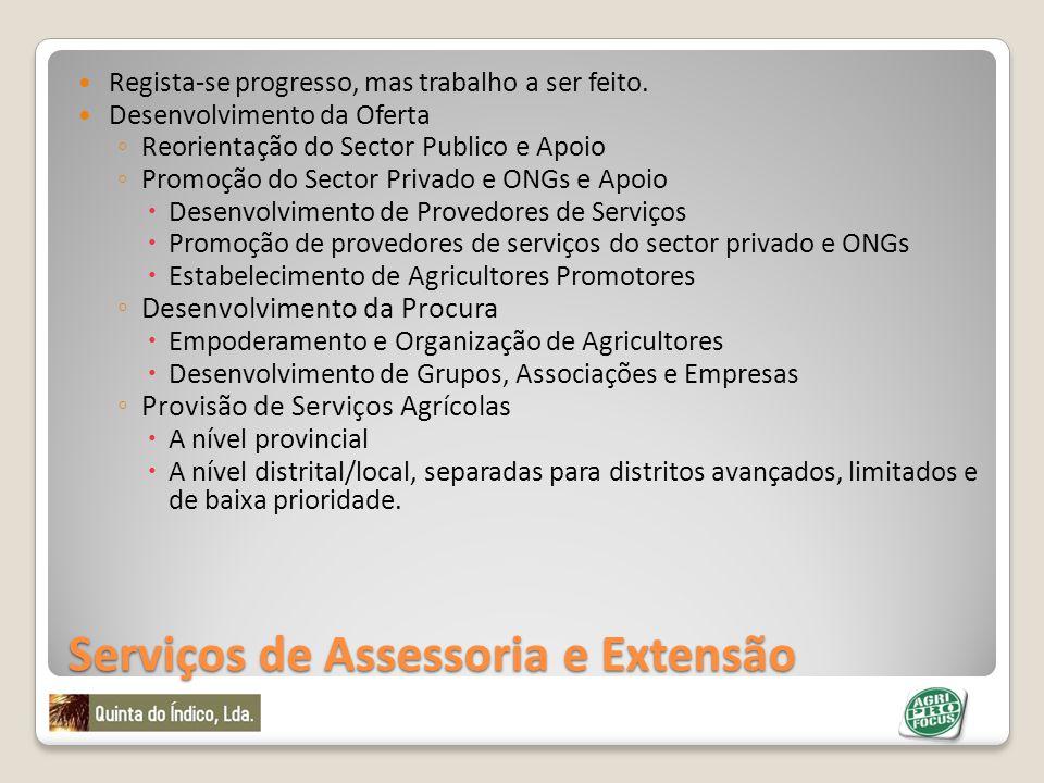 Serviços de Assessoria e Extensão