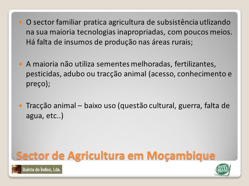 Sector de Agricultura em Moçambique