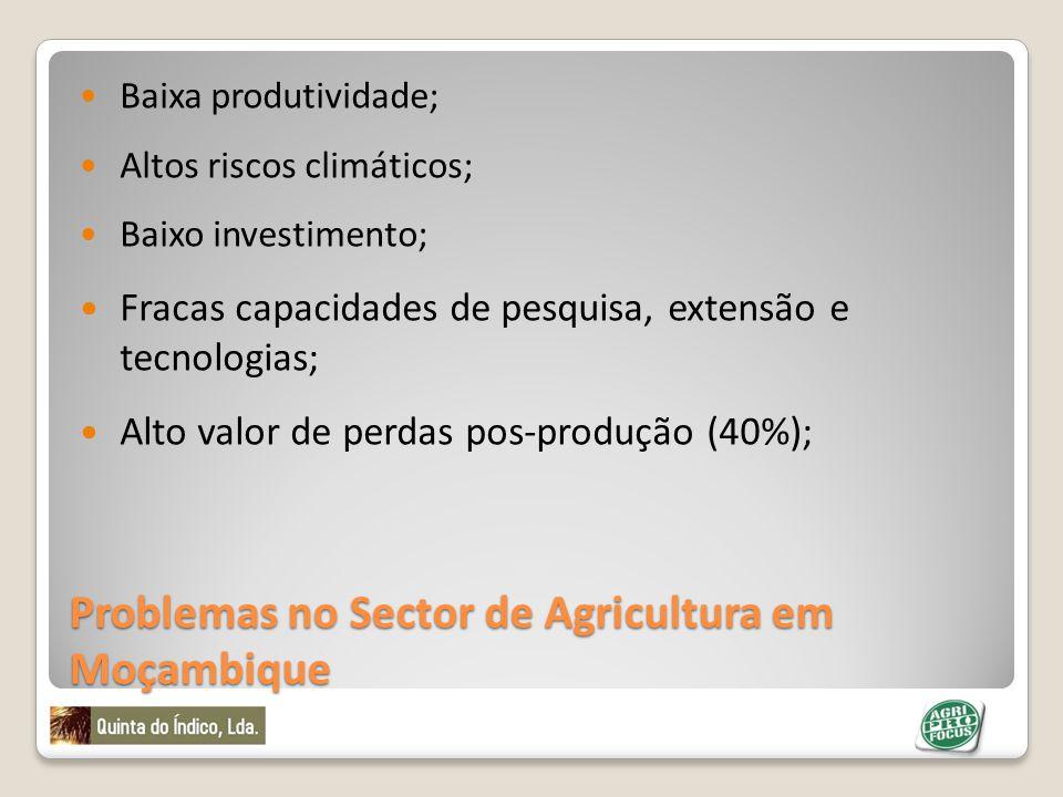 Problemas no Sector de Agricultura em Moçambique