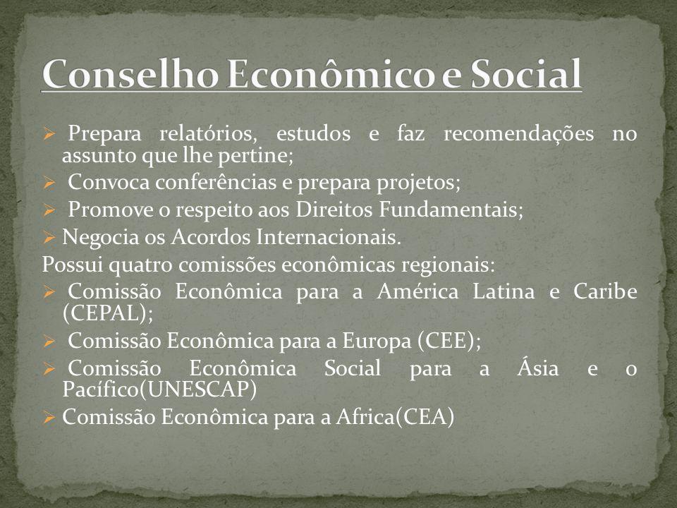 Conselho Econômico e Social