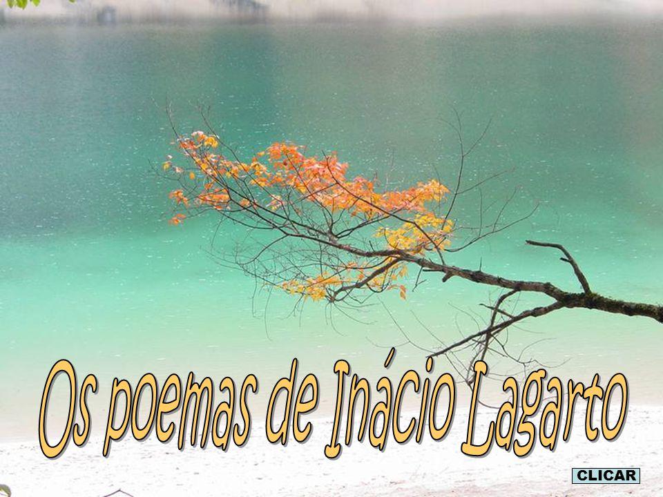 Os poemas de Inácio Lagarto