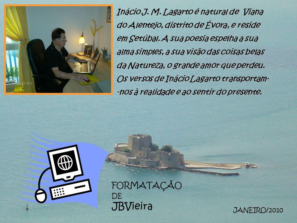 FORMATAÇÃO DE JBVieira