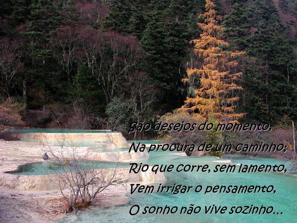 São desejos do momento, Na procura de um caminho; Rio que corre, sem lamento, Vem irrigar o pensamento,