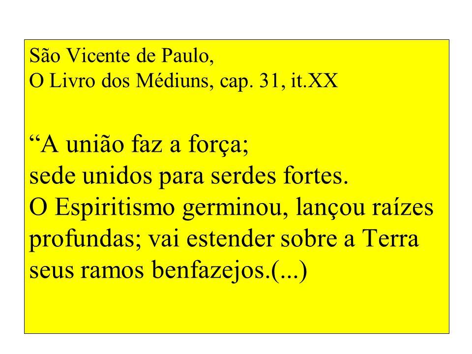 São Vicente de Paulo, O Livro dos Médiuns, cap. 31, it