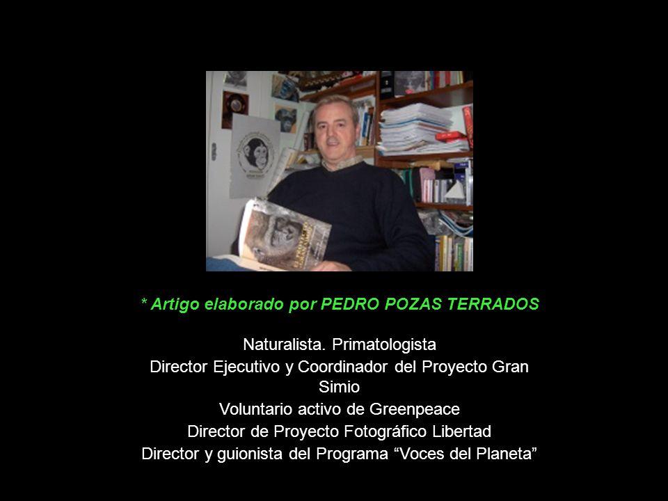 * Artigo elaborado por PEDRO POZAS TERRADOS
