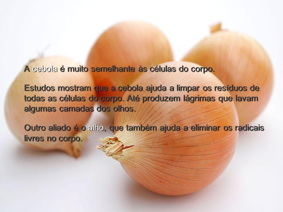 A cebola é muito semelhante às células do corpo.