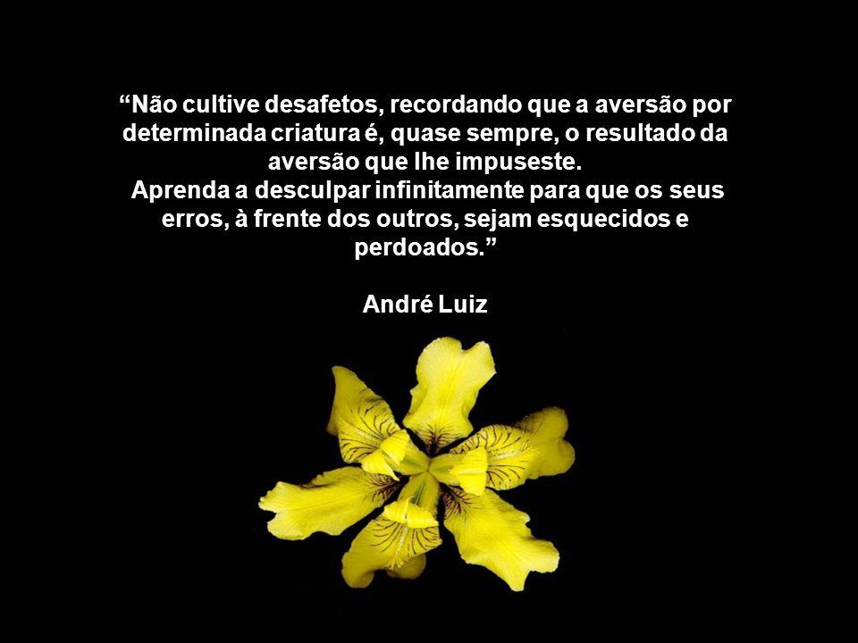Não cultive desafetos, recordando que a aversão por determinada criatura é, quase sempre, o resultado da aversão que lhe impuseste.