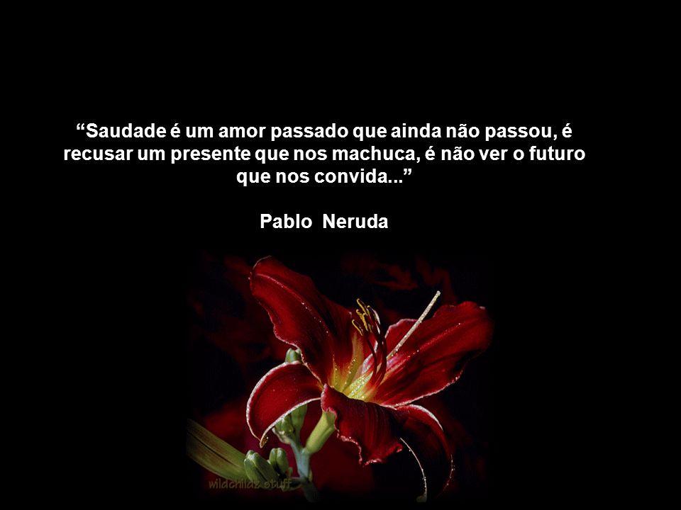 Saudade é um amor passado que ainda não passou, é recusar um presente que nos machuca, é não ver o futuro que nos convida...