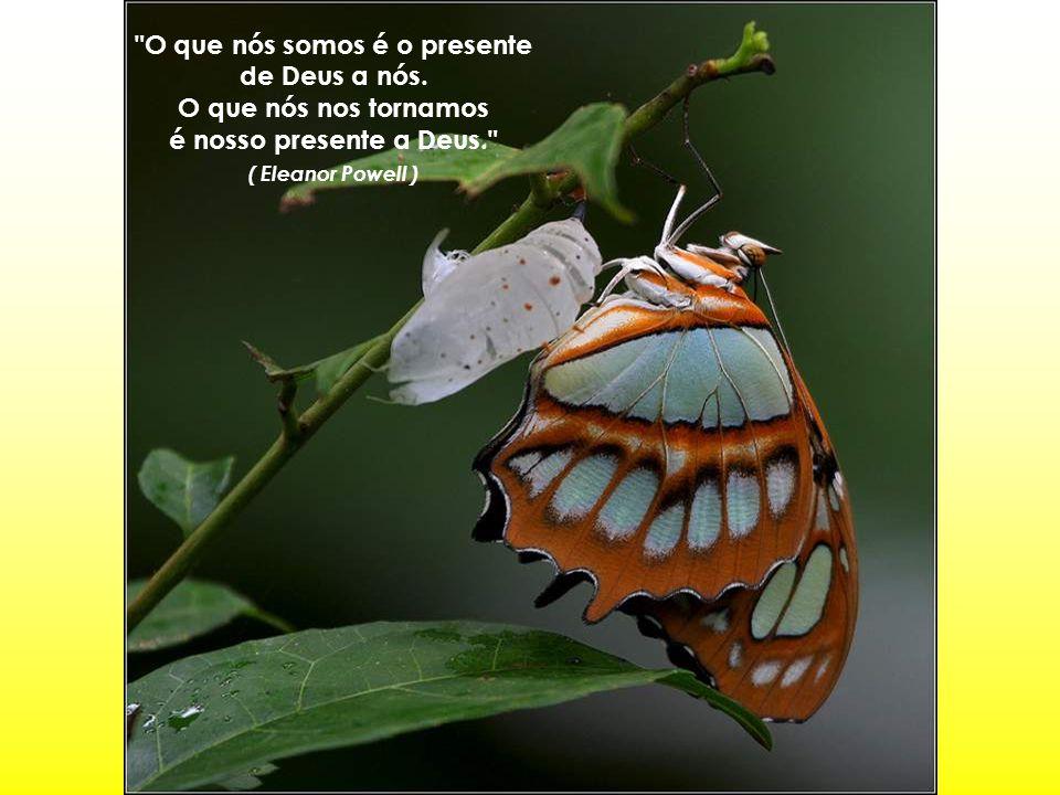 O que nós somos é o presente