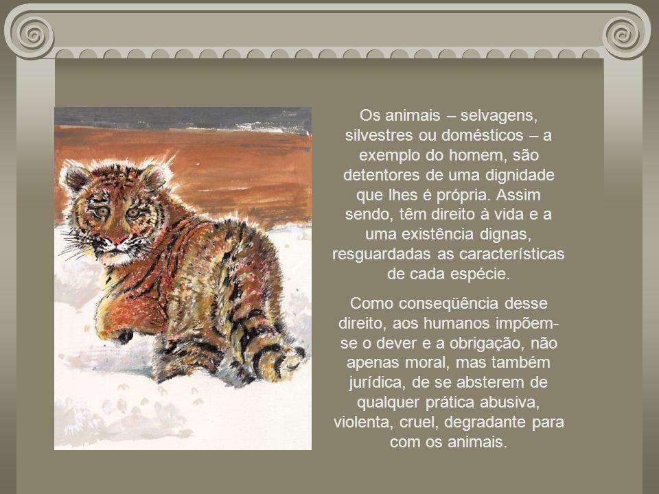 Os animais – selvagens, silvestres ou domésticos – a exemplo do homem, são detentores de uma dignidade que lhes é própria. Assim sendo, têm direito à vida e a uma existência dignas, resguardadas as características de cada espécie.
