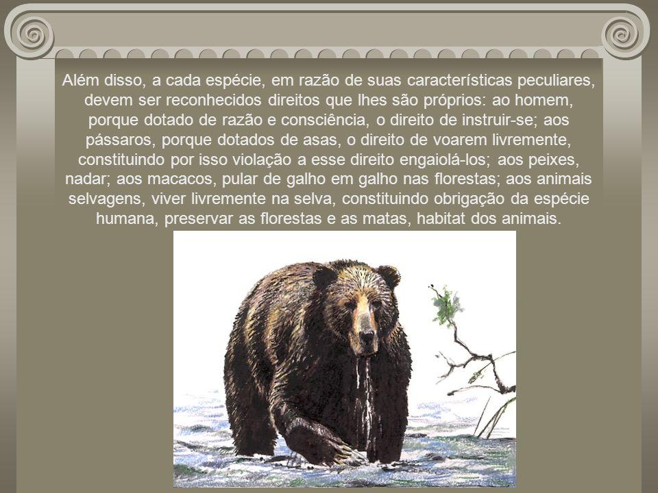 Além disso, a cada espécie, em razão de suas características peculiares, devem ser reconhecidos direitos que lhes são próprios: ao homem, porque dotado de razão e consciência, o direito de instruir-se; aos pássaros, porque dotados de asas, o direito de voarem livremente, constituindo por isso violação a esse direito engaiolá-los; aos peixes, nadar; aos macacos, pular de galho em galho nas florestas; aos animais selvagens, viver livremente na selva, constituindo obrigação da espécie humana, preservar as florestas e as matas, habitat dos animais.