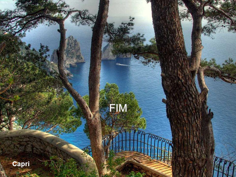 FIM Capri