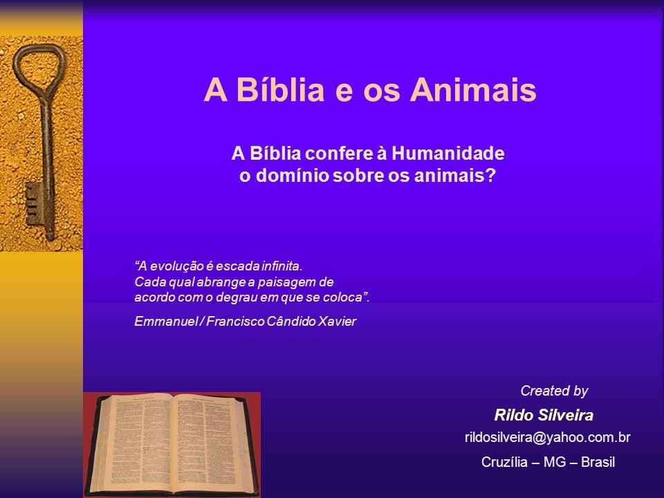 A Bíblia confere à Humanidade o domínio sobre os animais
