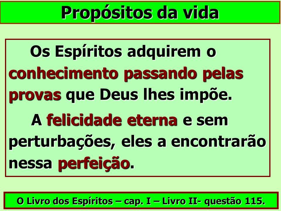 O Livro dos Espíritos – cap. I – Livro II- questão 115.