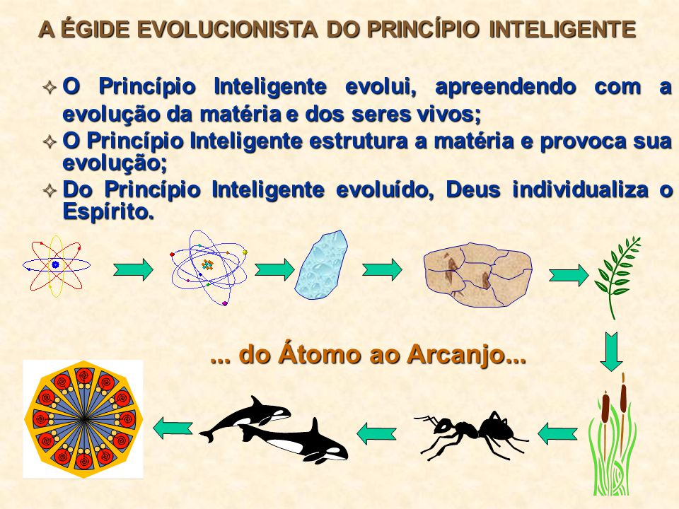 A ÉGIDE EVOLUCIONISTA DO PRINCÍPIO INTELIGENTE